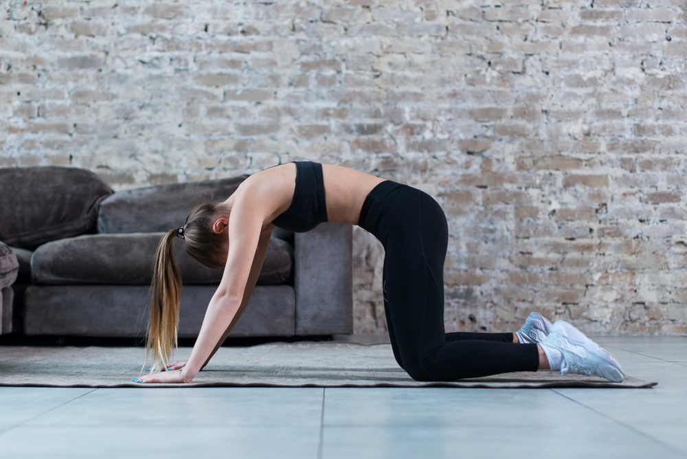 Bicycle Crunch – The Best Abs Exercise