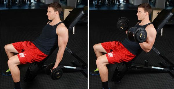 Seated-incline-dumbbell-front-raises