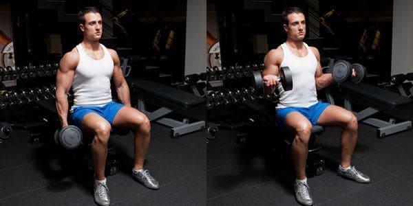 Supinated-wrist-curl-with-dumbbell-sitting-on-a-bench