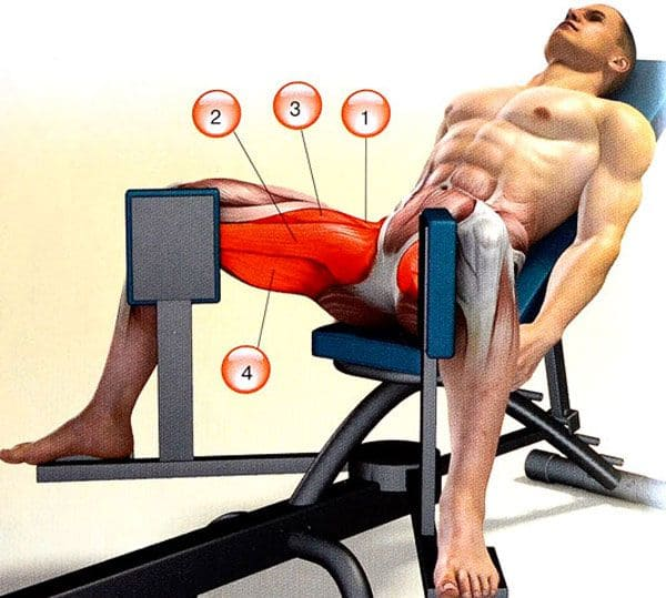 exercise-on-the-abduction-machine-working-muscles